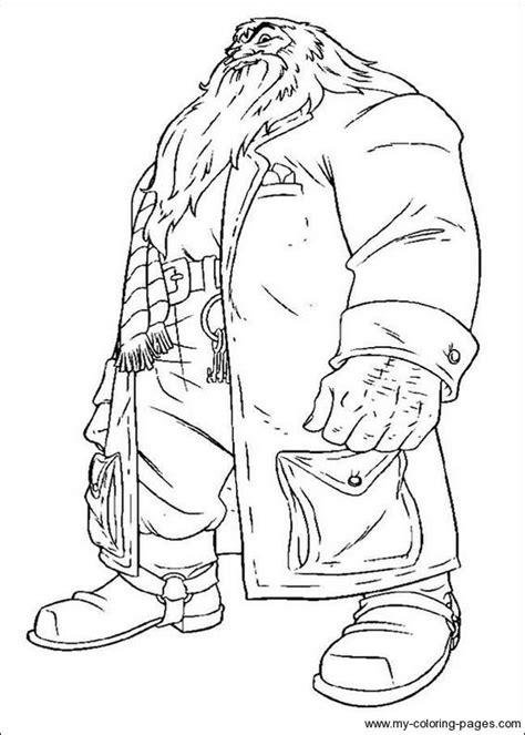 harry potter   sorcerers stone coloring pages
