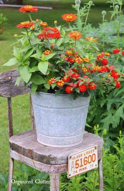 Best Primitive Flowers Gardens Images Pinterest
