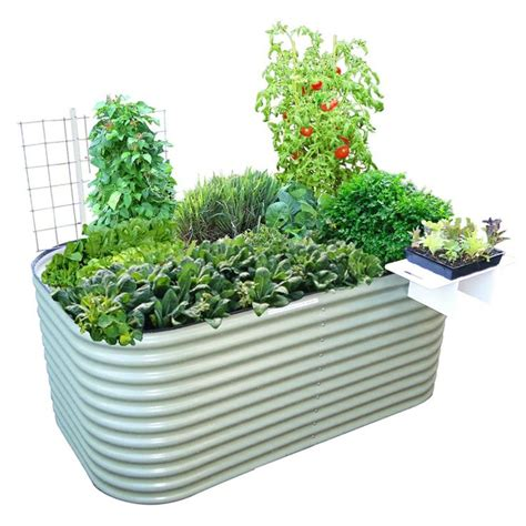 31 Best Garden Beds Corrugated Iron Images On Pinterest