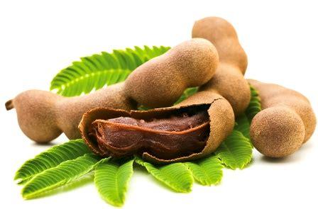 tanaman obat untuk menyembuhkan bisul secara alami