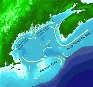 Marine Forecast Cape Cod Bay