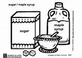 Sugar Coloring Maple Syrup Pages Designlooter sketch template
