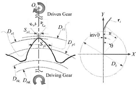 Hydraulic Modification Definition by Definition Ofasymmetric Involute Tooth Profile