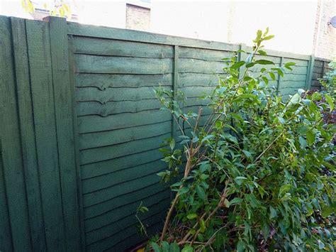 Fences, Garden