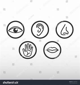 Five Senses Icon Stock Vector 734043349 - Shutterstock