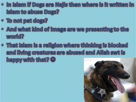 dogs abused  islam  misconception  dogs