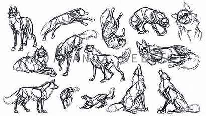 Wolf Deviantart Gestures Reference Demonic Fox Poses
