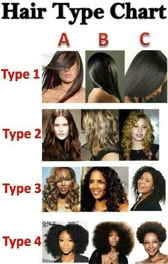 Different Types Of Hair by Hair Type Chart Hair Hair Types