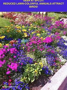 Photo : Small Backyard Landscape Designs Images 102