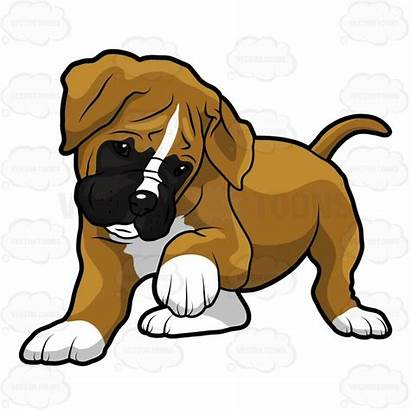 Boxer Puppy Clipart Dog Dogs Paw Cartoon