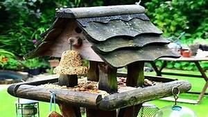 Vogelhaus Selber Bauen Kinder : vogelhaus bauanleitungen bauanleitung 3 hobby community selber bauen anleitung kostenlos ~ Orissabook.com Haus und Dekorationen