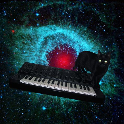cats  synthesizers  space