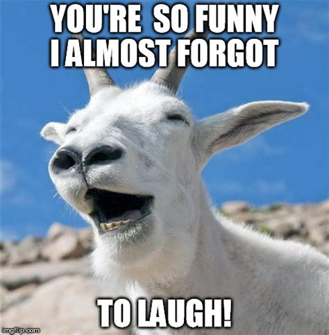 Funny Goat Memes - 14 most funny goat pictures