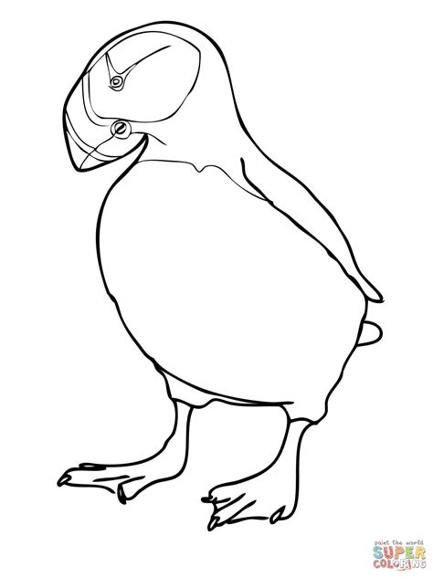 Kleurplaat Papegaaiduiker by Puffins Coloring Pages Coloring Home