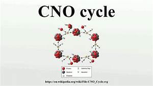 Cno Cycle
