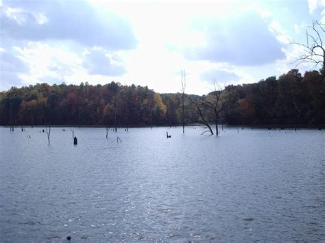 fishing brookville lake eli quakertown report creek indiana bassfishin reports