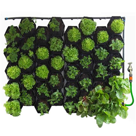 Greenwall Vertical Garden Kit by Vicinity Greenwall Vertical Garden Kit 40 Pots