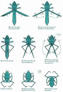 Longhorn Beetle By Robert Lang