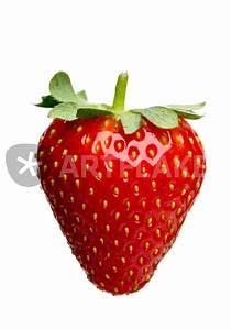 Schranktüren Einzeln Kaufen : einzelne erdbeere bild als poster und kunstdruck von ~ Michelbontemps.com Haus und Dekorationen
