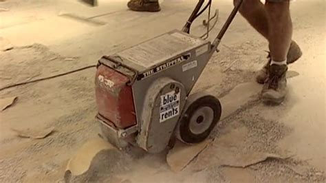 linoleum flooring removal carpet removal tool home depot soorya carpets