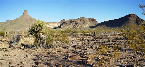Landscape Kingman Az by Route 66 Kingman Az To Oatman Az One Journey