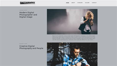 wordpress themes  photographer photo blog