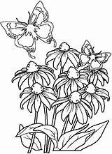 Coloring Flowers Pages Bouquet Print Printable Stencils Coloringtop sketch template