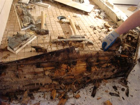 water leak bathroom floor water leaking from second floor bathroom wood floors 24565