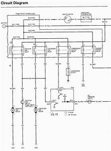1994 Honda Passport Radio Wiring Diagram