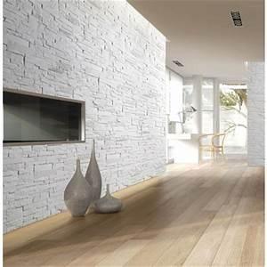 Brique De Parement Blanche : plaquette de parement bricostone blanc plaquette de ~ Dailycaller-alerts.com Idées de Décoration