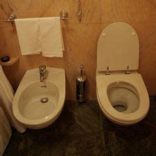 Toilet And Bidet Pozzi Ginori  Ebay  Royal Victorian
