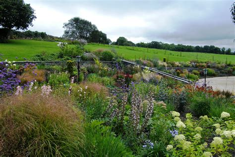 Floral Abundance Garden In Killaloe, Co. Clare