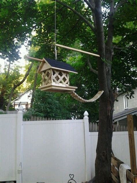 squirrel feeder plans  woodworking projects plans