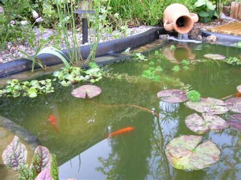 le uv pour bassin le forum de bassin bassin de jardin baignade naturelle technique plantes aquatiques