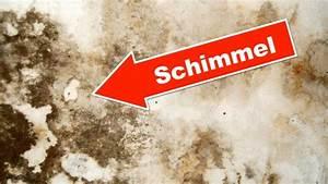 Schimmel Von Der Wand Entfernen : 8 sofortma nahmen gegen schimmel in der wohnung schimmel ~ Watch28wear.com Haus und Dekorationen