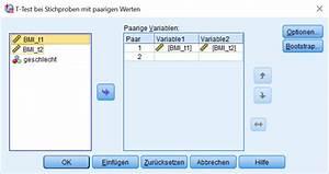 Mittelwert Berechnen Spss : t test dependent sample screenshoot 2 statistik verst ndlich ~ Themetempest.com Abrechnung