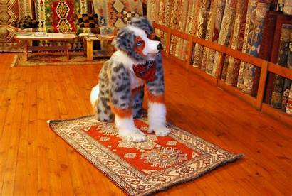 Furry Turkish Islam Community Tycho Aussie Converts