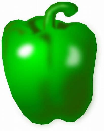 Pepper Clipart Vector Capsicum Clip Peppers Bell