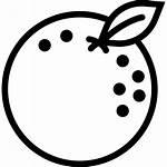 Orange Icon Fruit Icons Gastronomy Cooking Svg