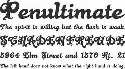Rose Font Fonts Cursive Phrases Halloween Bold