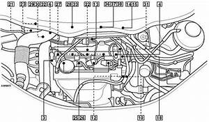 Audi A2 Wiring Diagram