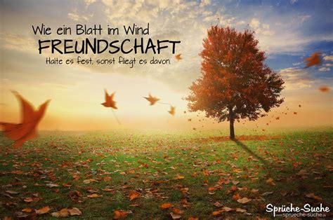 freundschaft spruch zum nachdenken blatt im wind