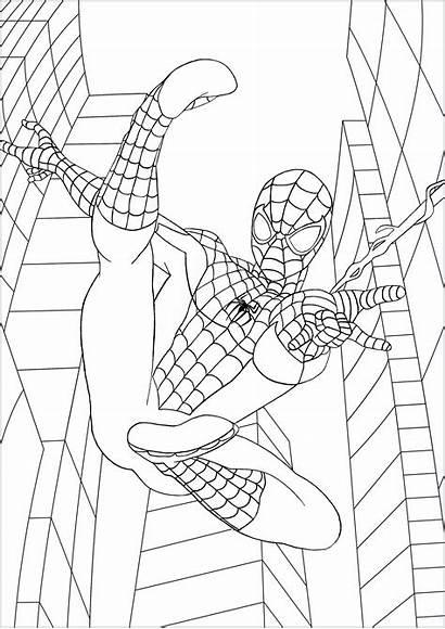 Coloring Spider Fan Fumetti Libri Marvel York