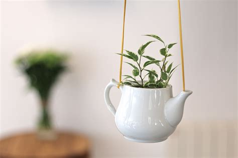 couleur de peinture pour une chambre tuto une plante suspendue dans une théière en céramique