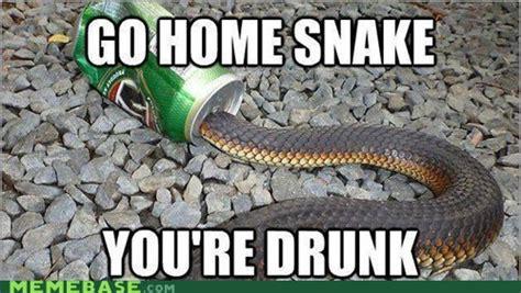 Snake Memes - funny snake memes image memes at relatably com