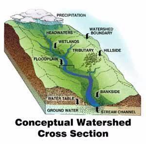 Watershed Resources City Of Berkeley CA