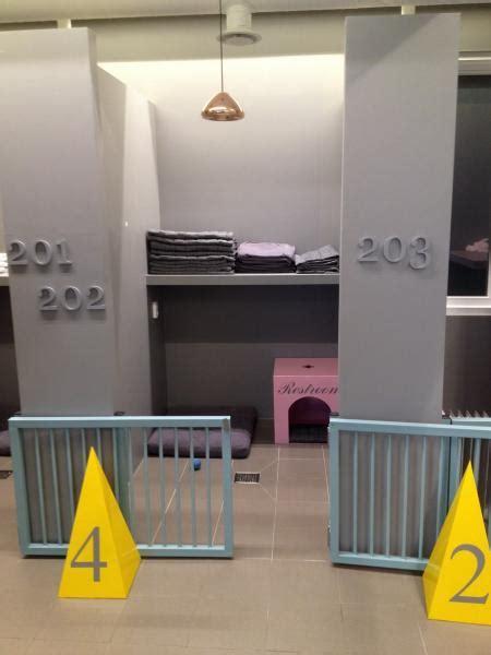 chambre de chien chambre pour chien chambre prestige que du luxe pour