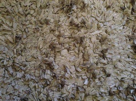 tj maxx rugs new shag rug from tj maxx home decor