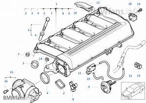2002 Bmw 330i Vacuum Diagram