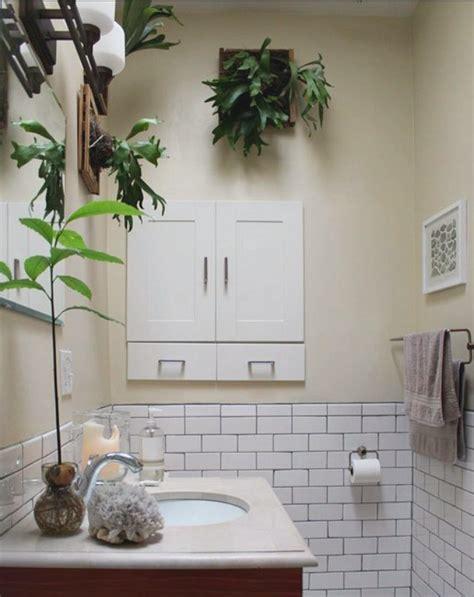creative ways   plants   bathroom